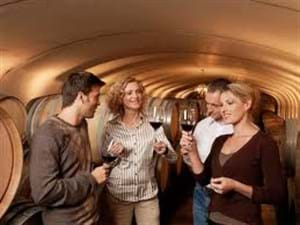 Wine Barrells and Tastings